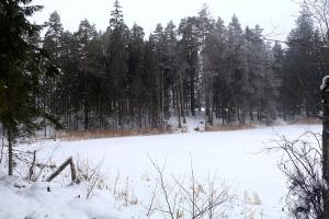 Travelnews.lv dodas 32 km pārgājienā Rendas apkārtnē Kuldīgas novadā 14
