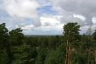 Iepazīsti dabas skaistumu Igaunijas dabas izpētes takā - Rannametsa-Tolkuse. Vairāk www.visitestonia.com 6