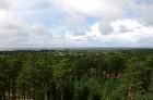 Iepazīsti dabas skaistumu Igaunijas dabas izpētes takā - Rannametsa-Tolkuse. Vairāk www.visitestonia.com 8