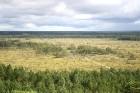 Iepazīsti dabas skaistumu Igaunijas dabas izpētes takā - Rannametsa-Tolkuse. Vairāk www.visitestonia.com 10