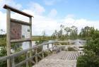 Iepazīsti dabas skaistumu Igaunijas dabas izpētes takā - Rannametsa-Tolkuse. Vairāk www.visitestonia.com 23