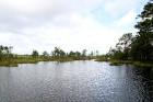 Iepazīsti dabas skaistumu Igaunijas dabas izpētes takā - Rannametsa-Tolkuse. Vairāk www.visitestonia.com 26