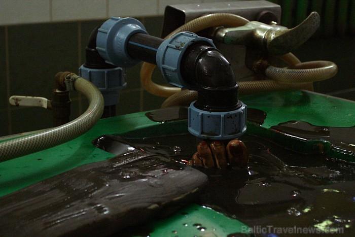Ezeru dūņu krājumi ir gandrīz neizsmeļami un katram viesiem ir iespēja nobaudīt pilnu vannu siltām ārstnieciskajām dūņām.  Foto: www.spavarska.ee