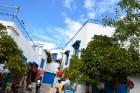 Sidi Bou Said - gleznainais andalūziešu ciematiņš ar baltajām sienām, ar kurām kontrastē debeszilās durvis un gleznie logu rāmji. Vairāk informācijas  9