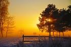 winter-1426551_960_720 15