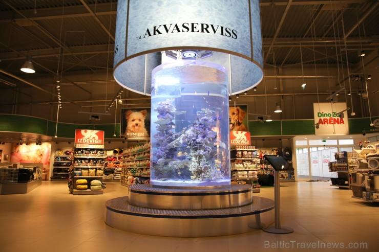 «Dino Zoo Pasaule» atklāšanas svētku laikā aicina aplūkot lielāko akvāriju Latvijā