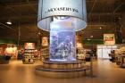 «Dino Zoo Pasaule» atklāšanas svētku laikā aicina aplūkot lielāko akvāriju Latvijā 1