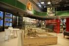 «Dino Zoo Pasaule» atklāšanas svētku laikā aicina aplūkot lielāko akvāriju Latvijā 5
