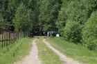 Pie Sivera ezera Latgalē latgalieši svin Jāņus un Līgas ar alu un sieru 23
