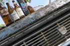 Pie Sivera ezera Latgalē latgalieši svin Jāņus un Līgas ar alu un sieru 30