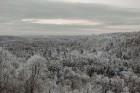 Kā ar maģisku burvju nūjiņas pieskārienu, Sigulda lepni iznes visu gadalaiku tērpus - zeltu, sudrabu, ievziedu mirdzumu un sulīgo vasaras zaļumu 23