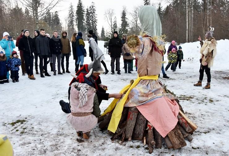 Kopā ar folkloristiem un latvisko tradīciju zinātājiem Alūksnē svinēja Meteņdienu, ejot rotaļās, lieloties, ēdot cūkas šņukuru, vizinoties no kalna un 245973