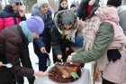 Kopā ar folkloristiem un latvisko tradīciju zinātājiem Alūksnē svinēja Meteņdienu, ejot rotaļās, lieloties, ēdot cūkas šņukuru, vizinoties no kalna un 33