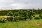 Travelnews.lv apmeklē Latvijas vienu no populārākajiem tūrisma objektiem - Rundāles pili 14