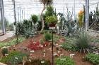 Travelnews.lv apmeklē Nacionālo botānisko dārzu Salaspilī 3