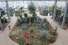 Travelnews.lv apmeklē Nacionālo botānisko dārzu Salaspilī 6