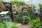 Travelnews.lv apmeklē Nacionālo botānisko dārzu Salaspilī 34