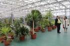 Travelnews.lv apmeklē Nacionālo botānisko dārzu Salaspilī 35
