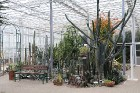 Travelnews.lv apmeklē Nacionālo botānisko dārzu Salaspilī 36