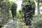Travelnews.lv apmeklē Nacionālo botānisko dārzu Salaspilī 39