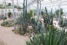 Travelnews.lv apmeklē Nacionālo botānisko dārzu Salaspilī 43