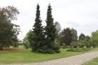 Travelnews.lv apmeklē Nacionālo botānisko dārzu Salaspilī 48
