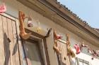 Sabiles pilsētas iedzīvotāji un viesi 5 dienas svin un bauda iemīļotos Vīna svētkus 19