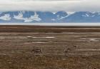 Latvijas Universitātes zinātnieki atgriezušies no ekspedīcijas Svalbāras arhipelāgā, kur tie pētīja ledājus un vides piesārņojumu vietā, kuru no Zieme 40
