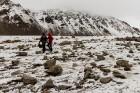 Latvijas Universitātes zinātnieki atgriezušies no ekspedīcijas Svalbāras arhipelāgā, kur tie pētīja ledājus un vides piesārņojumu vietā, kuru no Zieme 56