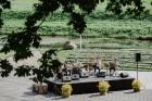 Valmieras pusē, Kocēnu novada Dikļos – Neikenkalna dabas koncerzālē zem saules apspīdētām, gubu mākoņu rotātām augusta debesīm izskanēja koncerts dzīv 11