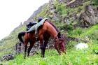 Travelnews.lv apmeklē Mutso ciemu Kaukāza kalnos un iepazīst viduslaiku cietoksni.  Atbalsta: Georgia.Travel 72