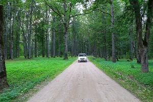 Travelnews.lv apceļo Latviju ar jauno biznesa klases mikroautobusu «Mercedes-Benz V-Klase» 45