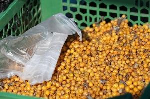 Travelnews.lv iepazīst Domabajā suvenīru tirgu tūristiem. Atbalsta: Magtur 16