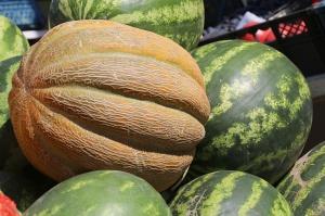 Karačaja-Čerkesijas republikā ēdienā tiek akcentēts garšīgs šašliks, bet augļus un dārzeņus ieved galvenokārt no citurienes. Atbalsta: Magtur 20