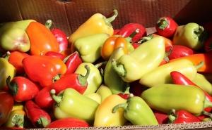 Karačaja-Čerkesijas republikā ēdienā tiek akcentēts garšīgs šašliks, bet augļus un dārzeņus ieved galvenokārt no citurienes. Atbalsta: Magtur 24