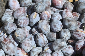 Karačaja-Čerkesijas republikā ēdienā tiek akcentēts garšīgs šašliks, bet augļus un dārzeņus ieved galvenokārt no citurienes. Atbalsta: Magtur 33