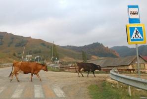 Travelnews.lv apceļo ar mikroautobusu Karačaja-Čerkesijas republiku. Atbalsta: Magtur 40