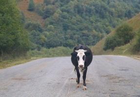 Travelnews.lv apceļo ar mikroautobusu Karačaja-Čerkesijas republiku. Atbalsta: Magtur 43