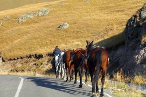 Travelnews.lv ar auto apceļo Kabarda-Balkārijas republiku Krievijā. Atbalsta: Magtur 57