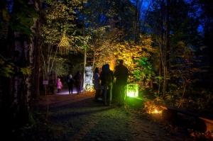 Vienkoču parkā norisinājās Uguns Nakts, kura mērķis ir vienu īso rudens dienu padarīt ilgāk gaišu, dot iespēju uzlādēt sevi ar sveču gaismu un siltumu 18