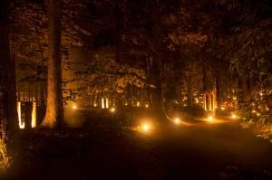 Vienkoču parkā norisinājās Uguns Nakts, kura mērķis ir vienu īso rudens dienu padarīt ilgāk gaišu, dot iespēju uzlādēt sevi ar sveču gaismu un siltumu 38