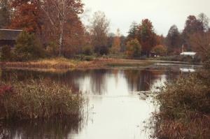 Gulbenē un tās apkārtnē rudens krāšņi izrotājis dabu, ļaujot ikvienam izbaudīt pasakainas ainavas 5