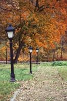 Gulbenē un tās apkārtnē rudens krāšņi izrotājis dabu, ļaujot ikvienam izbaudīt pasakainas ainavas 16