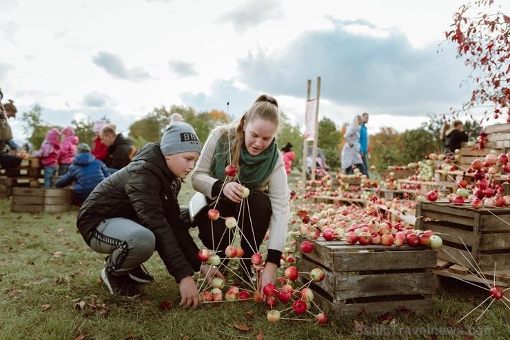 Jau astoto gadu Latvijas sulīgākais festivāls Dobelē pulcē novada un apkārtnes mājražotājus, stādaudzētājus, augļkopjus un interesentus