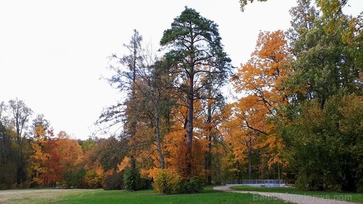 Preiļu pilsētu un parku ieskauj rudens zelts