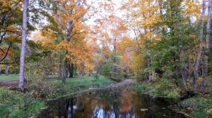 Preiļu pilsētu un parku ieskauj rudens zelts 3