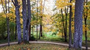 Preiļu pilsētu un parku ieskauj rudens zelts 4