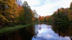 Preiļu pilsētu un parku ieskauj rudens zelts 7