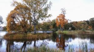 Preiļu pilsētu un parku ieskauj rudens zelts 14