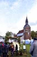Simjūda tirgus Valmierā pulcē tirgotājus ar viduslaiku Livonijas labumiem 5